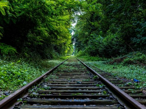 Про адлерівські поїзди